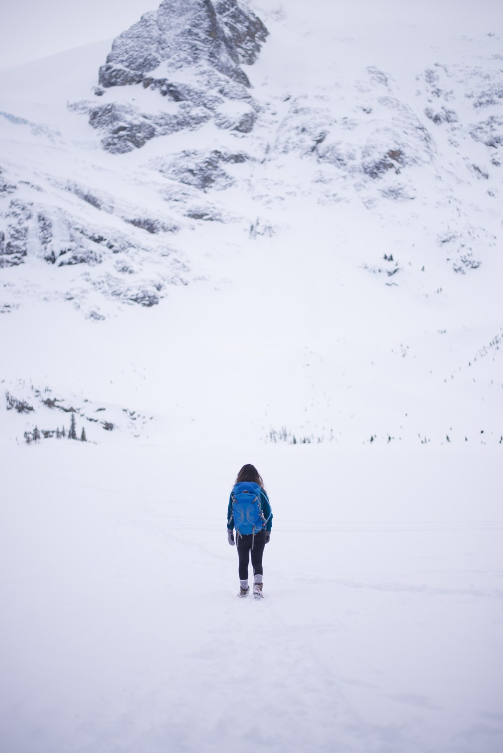 Snowshoe trails near Vancouver: Joffre Lake - Pemberton, British Columbia