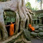 Monks relaxing at Ta Prohm temple, Siem Reap