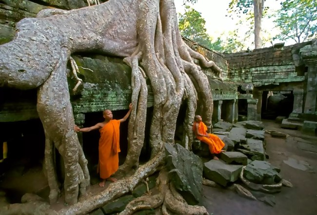 Monks relaxing at Ta Prohm temple, Siem Reap.