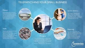telematics small businesses infog