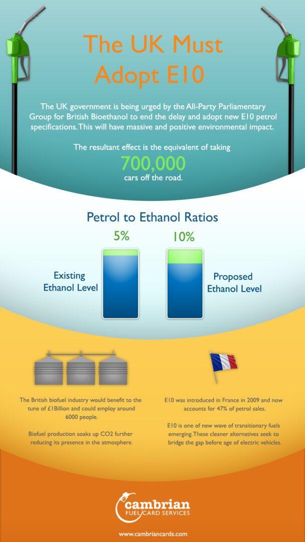adopt e10 infographic