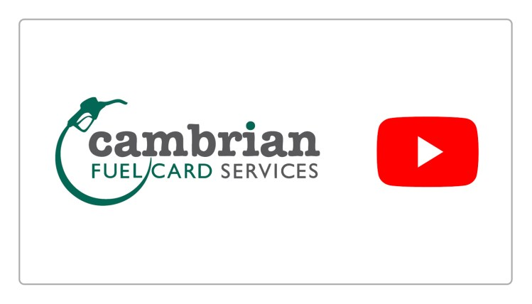 cambrian youtube