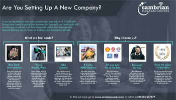 Are You Setting Up A New Company? – Infographic