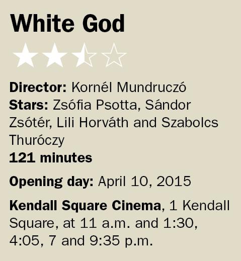 041015i White God