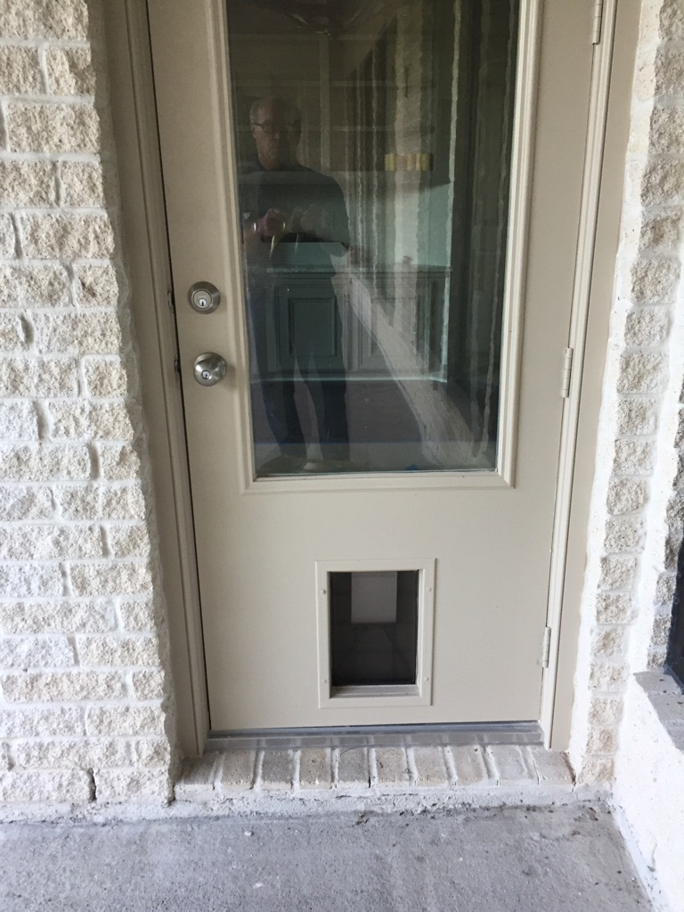 doggy doors cambridge doors windows
