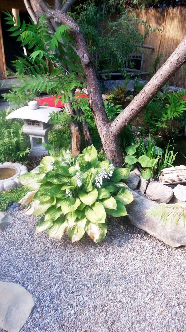 Outdoor Tsukubai