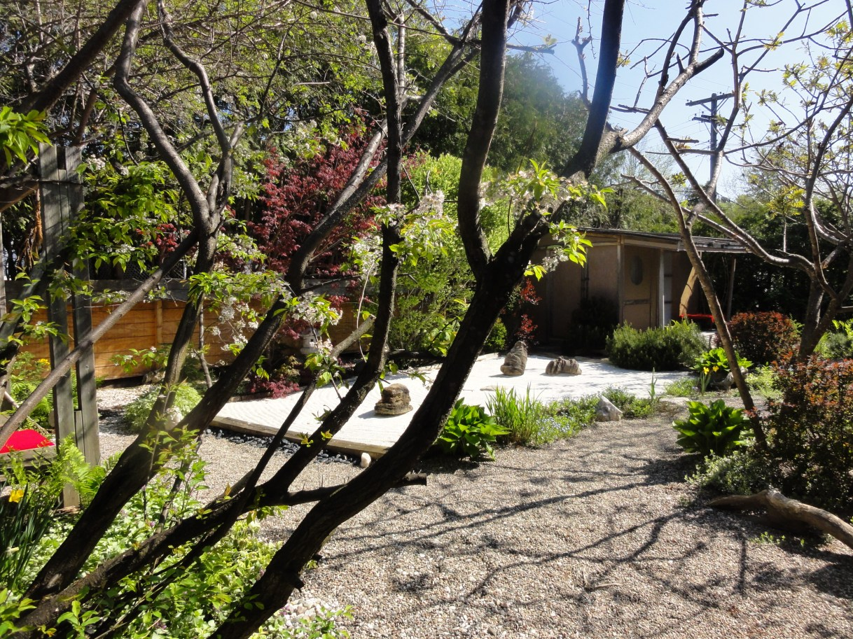 Early Spring at Camellia House
