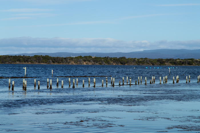 Freycinet, Tasmania, saffire, Australia, travel, photography, oyster farm
