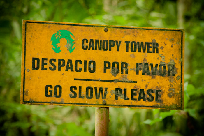 Panama Canopy Tower