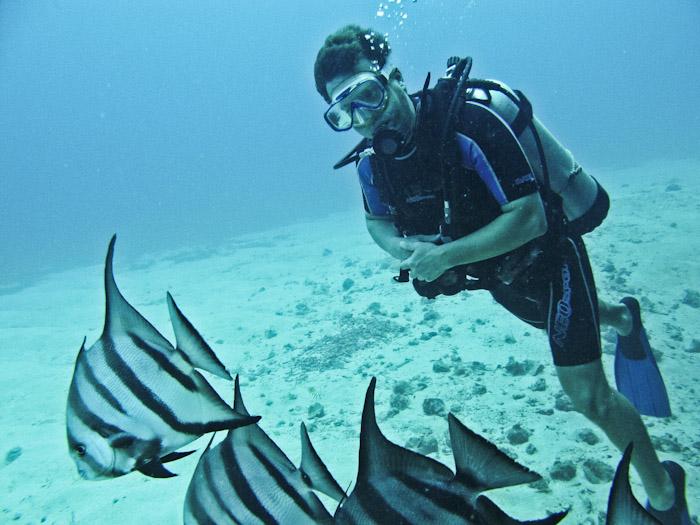 Diving Anguilla