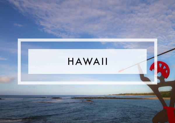 Posts on hawaii