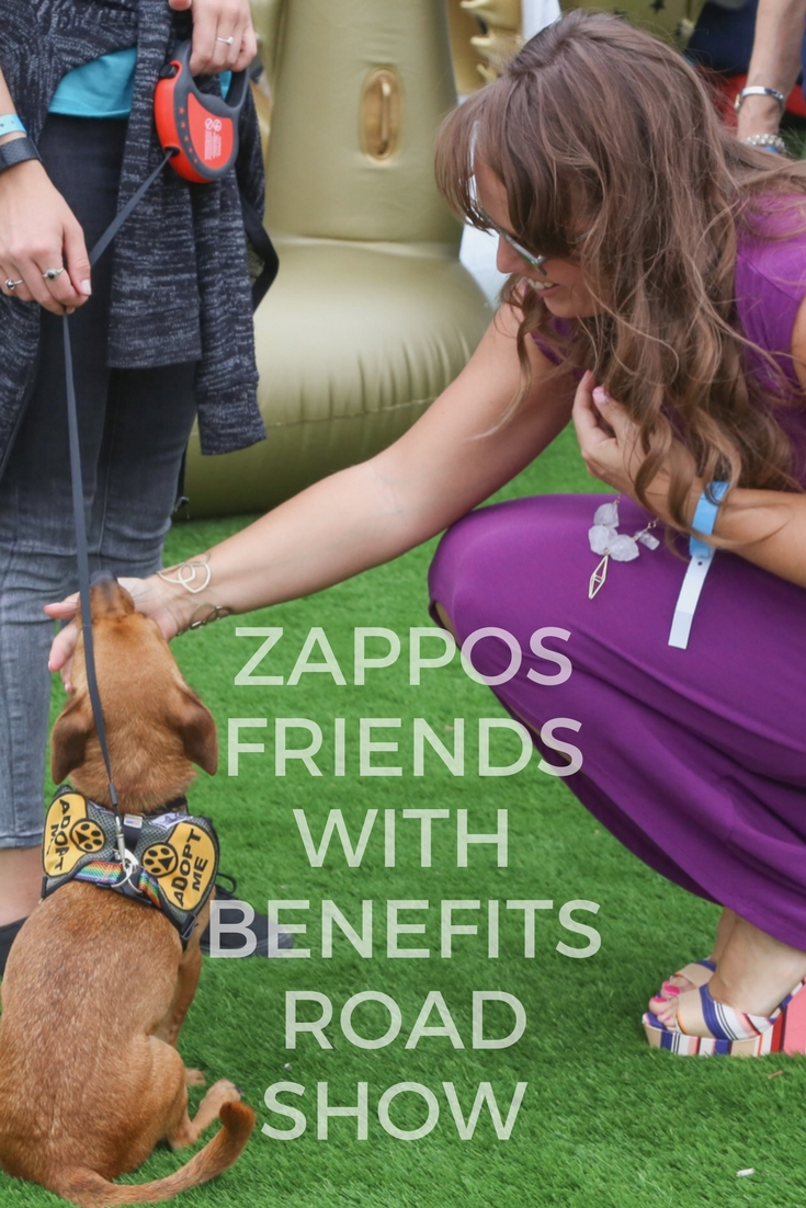 #ZapposRoadShow Travels the Country: Shop for Clothes, Eat Good Food, Adopt a Dog —why wouldn't you come out?