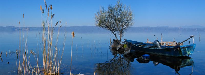 blueboat_bolsena_PatrickNicholas_800px