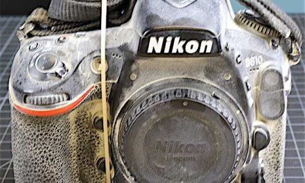 Here's what happens when you take a Nikon D810 to Burning Man