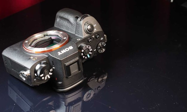 Sony Alpha 9: price, release date, specs confirmed