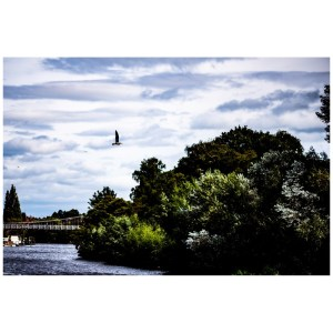 River Dee Chester fine art print