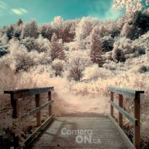 infrared photography tutorial example 3