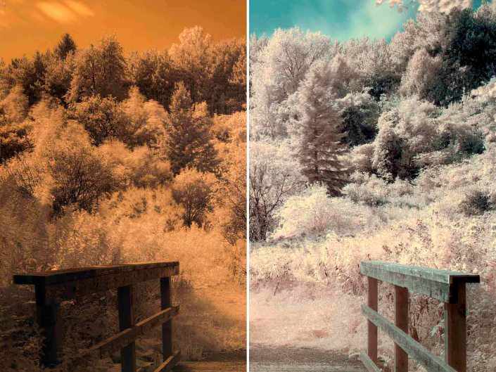 infrared photography f10, 30s, ISO 100, 50mm (Custom white balance)