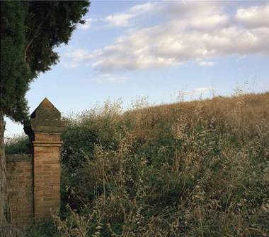 Tuscany: Cloud, Tree and Hillside, 2005
