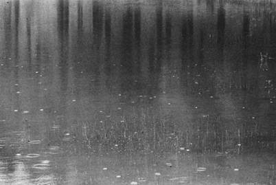 Paul Caponigro - Pond in Rain