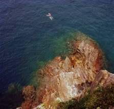 The Cinque Terre in Liguria, 2003