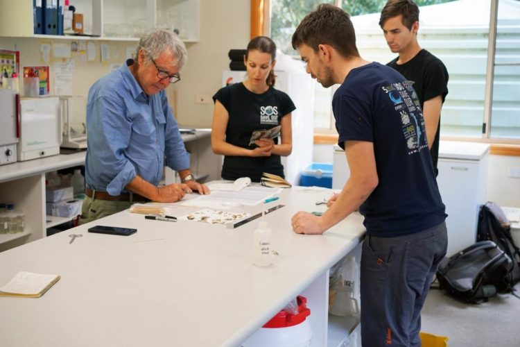 The team in the Lord Howe Island research station