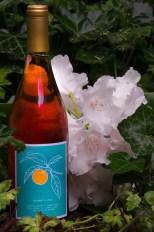 Cameron Winery 2014 Saignée of Pinot noir label