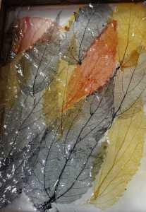 Teinturesvégétales sur fibres à papier