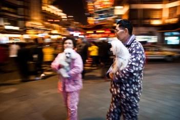 New Year Celebrations in the Yuyuan Gardens & Bazaar