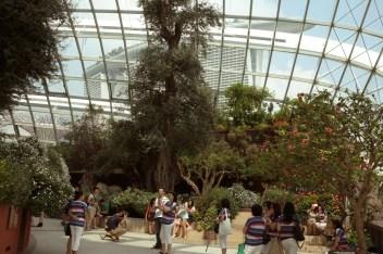 Marina Bay Gardens