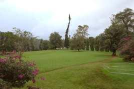 The Botanical Garden in Peradeniya