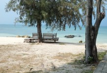 Koh Munnork, the bench