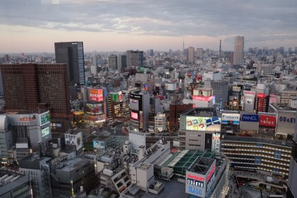 View over Shibuya