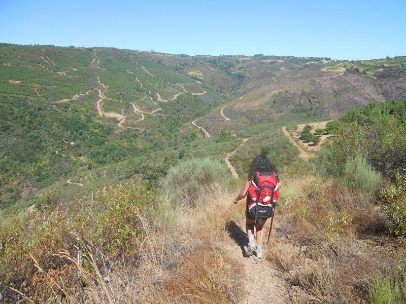 some hills on the via de la plata