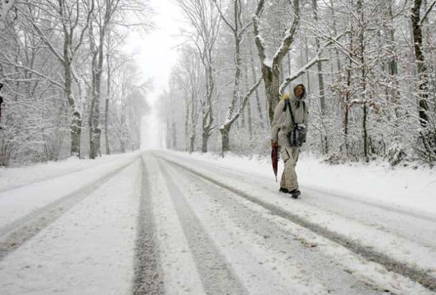 Camino in winter