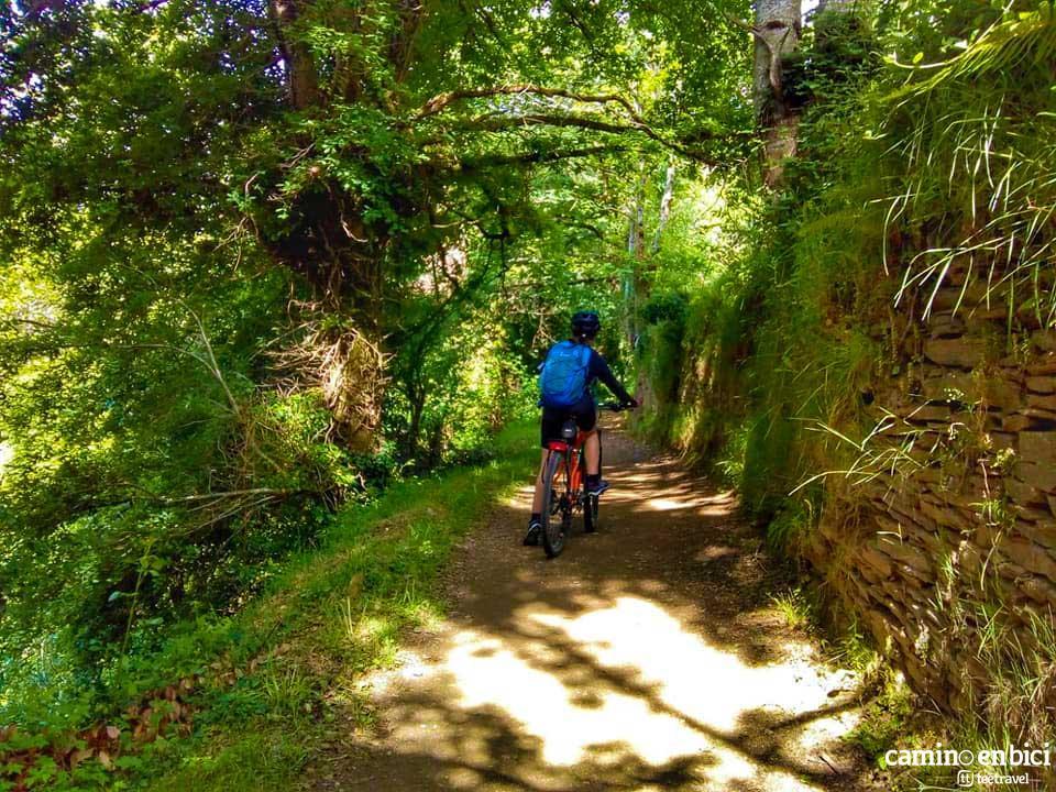 Camino Francés en Bicicleta - Etapa O Cebeiro-Sarria