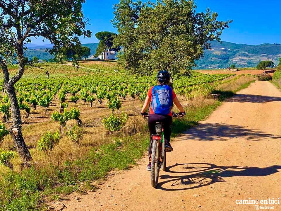 Camino de Santiago Francés en Bicicleta - Etapa Ponferrada-O Cebreiro
