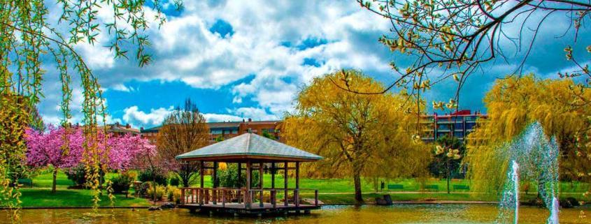 Parque Yamaguchi - Pamplona