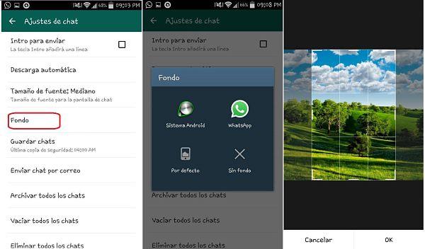 Tips y trucos de WhatsApp. cambiar fondo