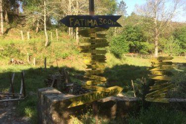 Her kan man åbenbart tage vejen mod Fatima