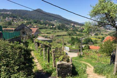 Flot landskab at vandre i - Souto, Galicien