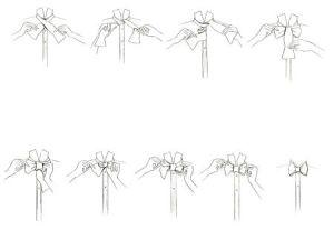 nos-de-gravatas-borboleta