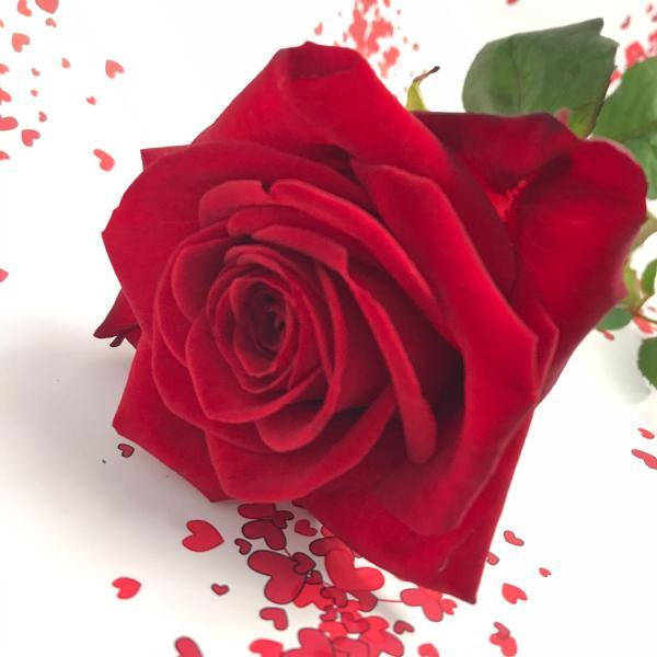 regala rose rosse napoli