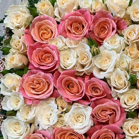 prato di rose
