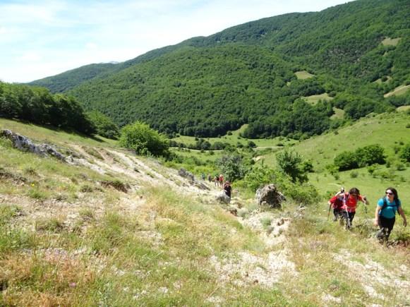 ACER Monte Cabbia DSC08852