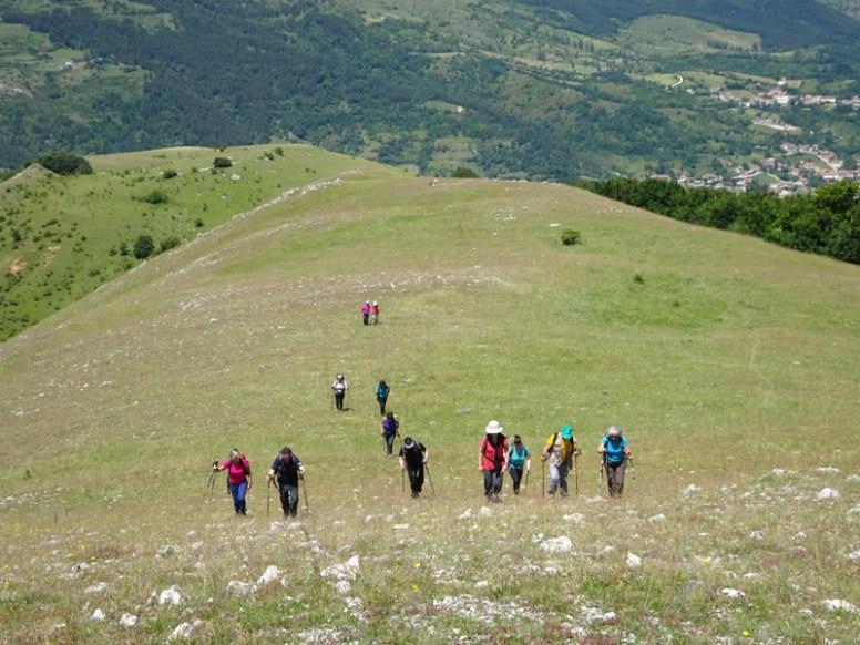ACER Monte Cabbia DSC08859