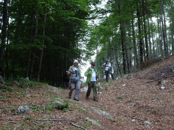 ACER Monte Tarino DSC08811