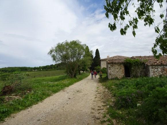 5-2019 Corbara-Titignano-10