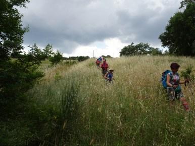 6-2019 Dolomiti Lucane-2