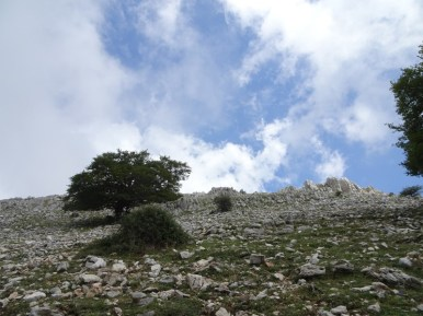 8-2019 monte Capreo13